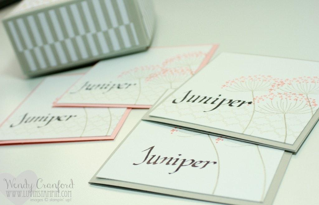 notecards stampin up