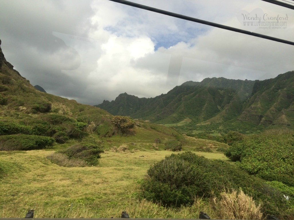 Several movies and TV Shows were filmed here.  Including Jurassic Park and Lost
