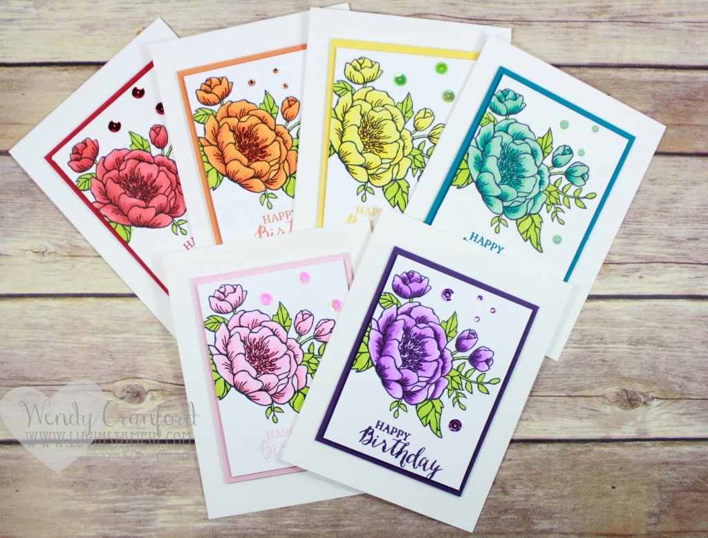 Happy Birthday Blooms rainbow of cards. Wendy Cranford www.luvinstampin,com