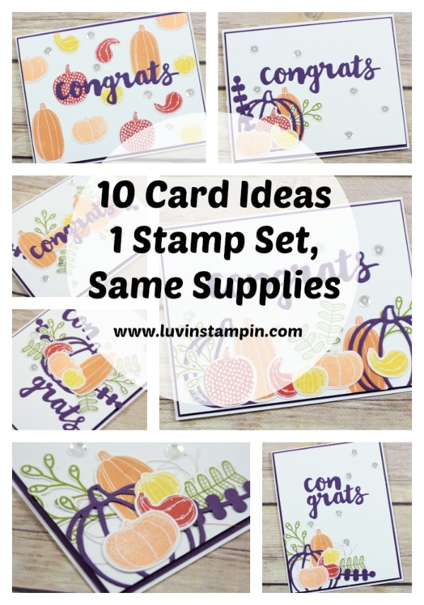 10 card ideas with one stamp set using same supplies Wendy Cranford www.luvinstampin.com