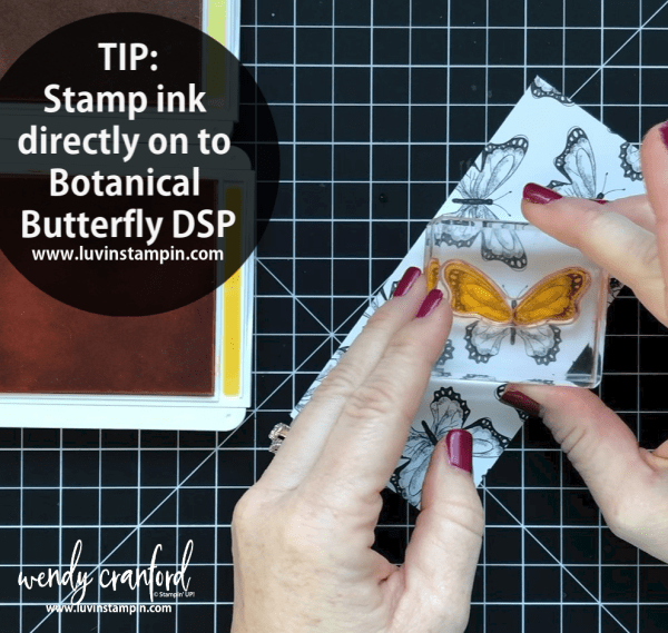 Butterfly  #luvinstampin #stampinup