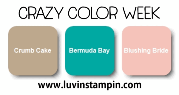 Crazy Color week. #colorinspiration #colorcombo Wendy Cranford www.luvinstampin.com