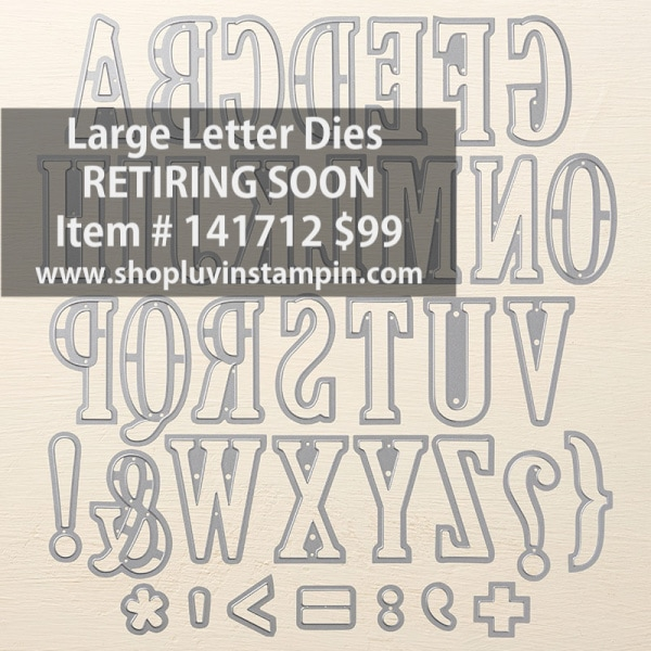 Large Letter dies from Stampin' UP! are great for creating card, banners, scrapbook pages, name tags, the options are endless.