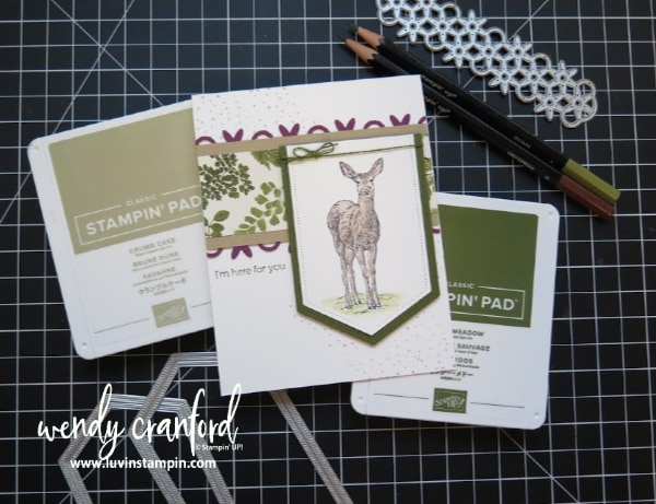 Nature's Beauty stamp set for Stampin' UP! #watercolor #aquapainter #cardmaking #fallcards
