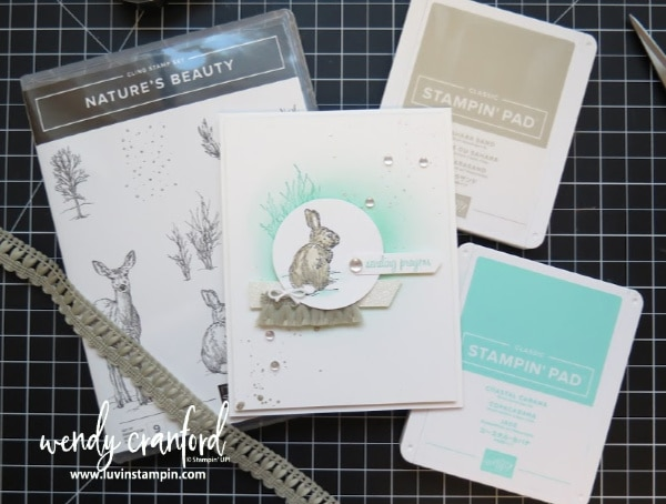 Nature's Beauty by Stampin' UP! #stampinup #luvinstampin #crafts #create #inkblending #stampingtechniques