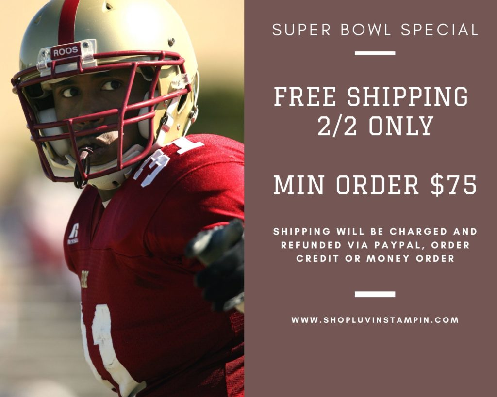 Super Bowl sales special offer free shipping. February 2nd only.