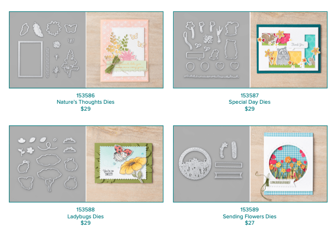 Products available for purchase from the Stampin' UP! coordination product release