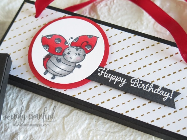 Valentines gift featuring Stampin' UP! Little Ladybug stamp set. #littleladybug
