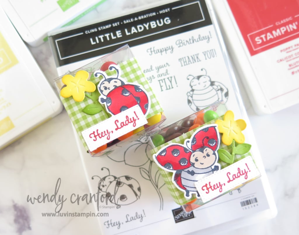 Get the Little Ladybug stamp set free with a $300 order