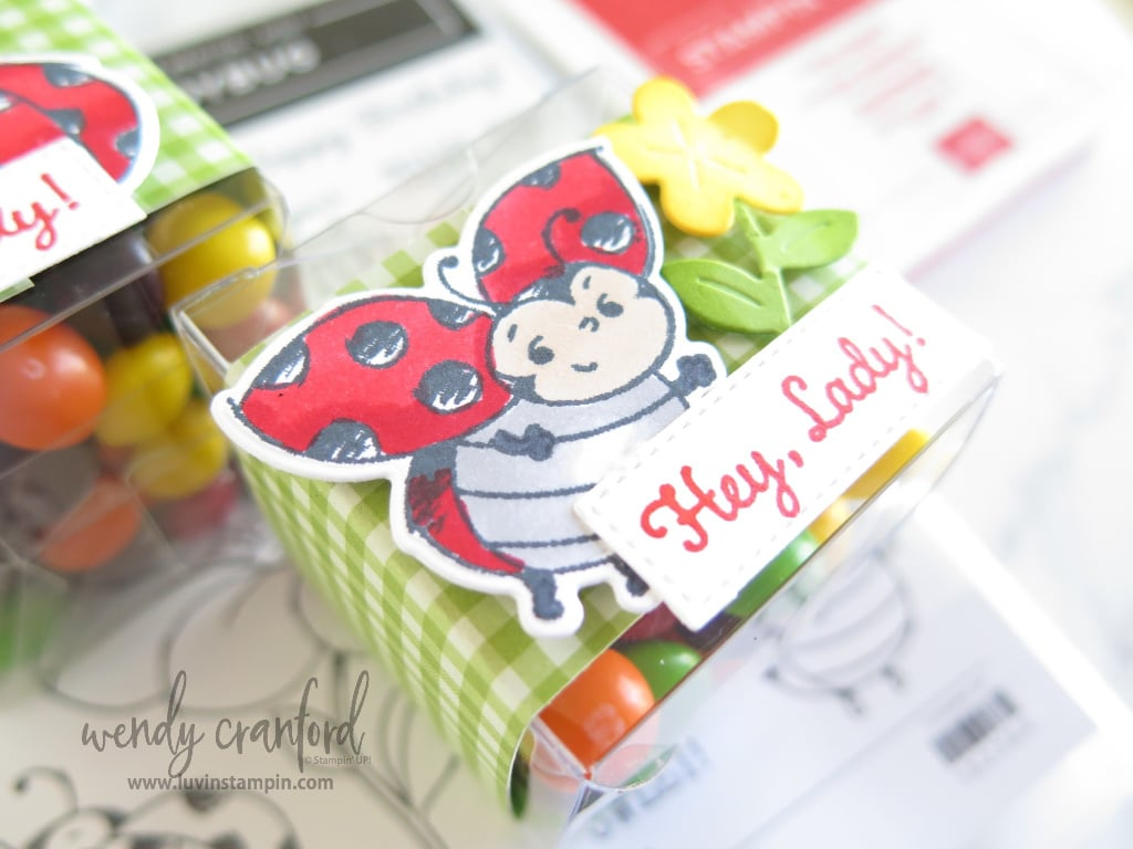 Use the Set Sail Stampin' UP! dies to create this cute sentiment piece for the simple treat box