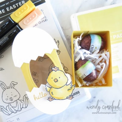 Baby Chick Easter Treat Box