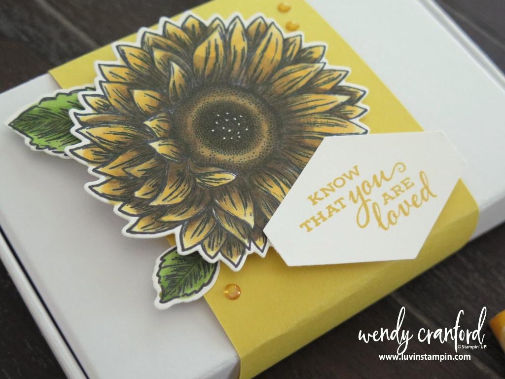 Close up of sunflower for share sunshine box