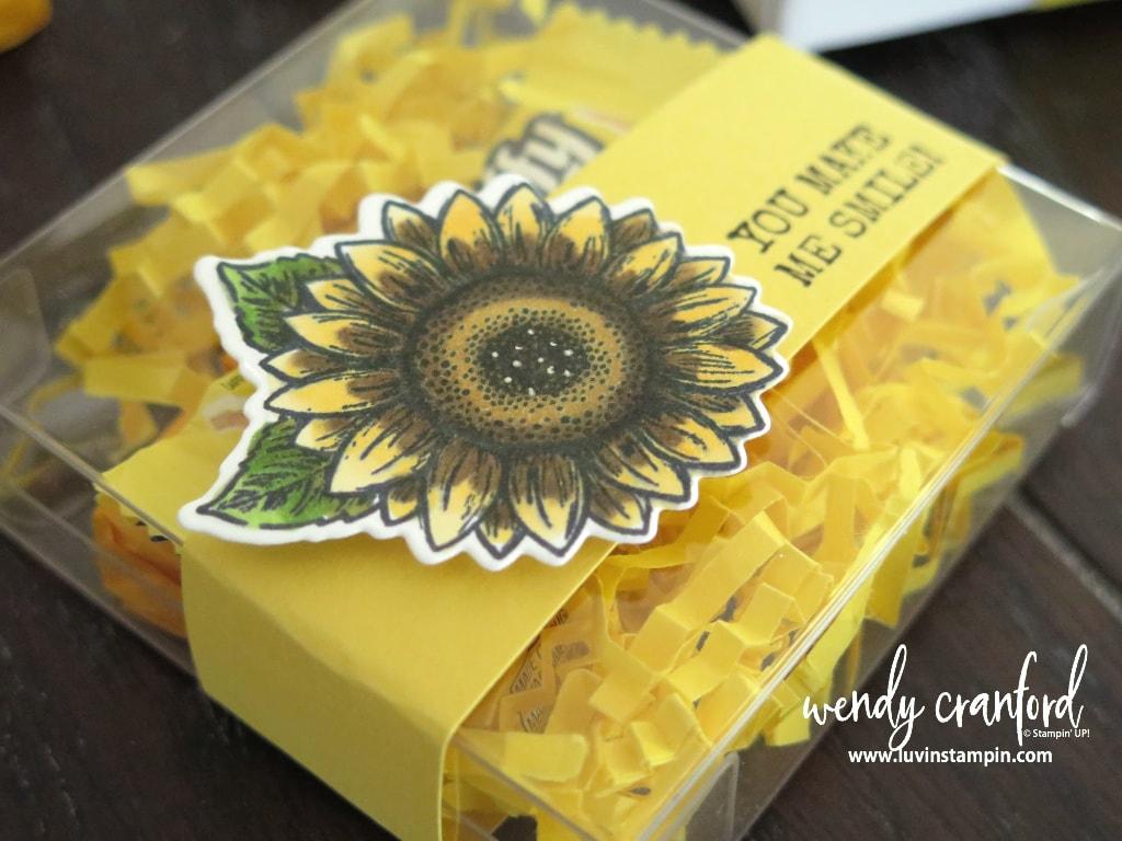 Mini Share Sunshine Box using small acetate boxes