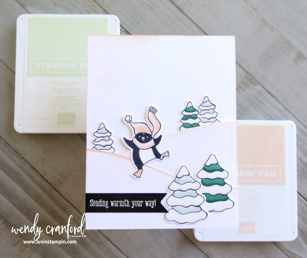 Freezin Fun Bundle from Stampin' UP! featuring Color Splash Nine inspiration