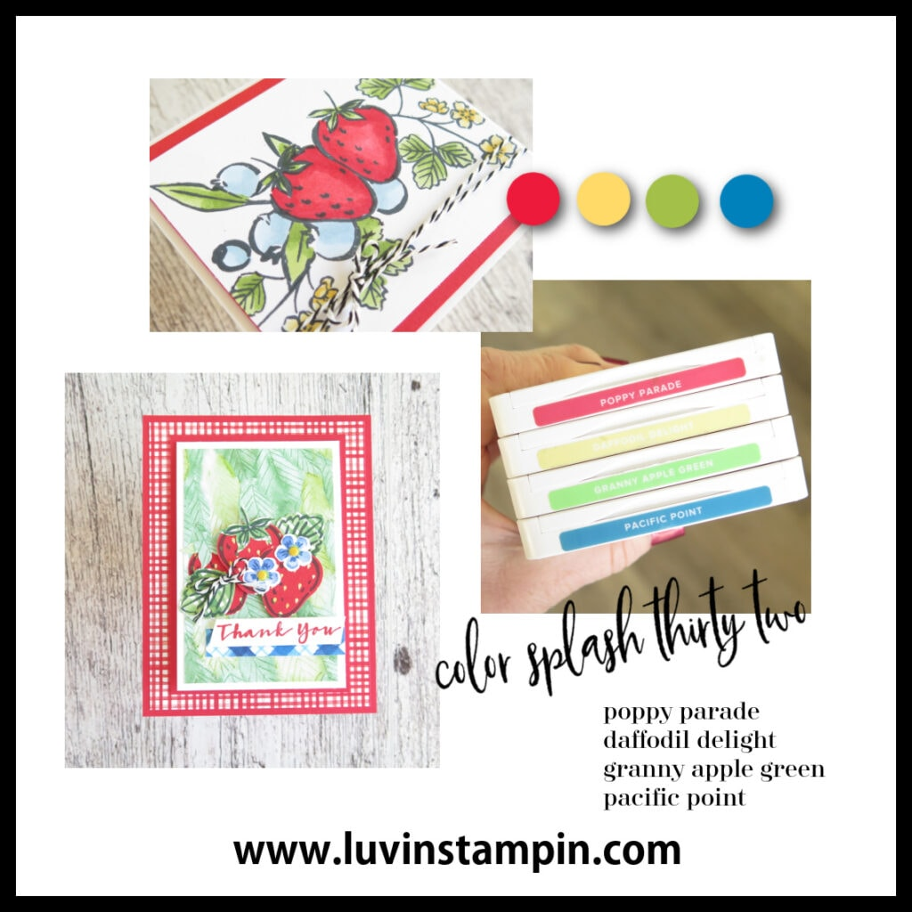 Color Splash 32 is a fun color combination of Poppy Parade, Daffodil Delight, Granny Apple Green and Pacific Point
