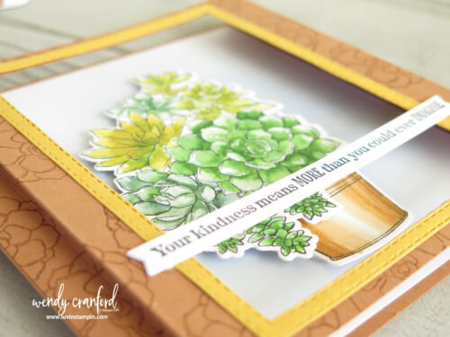 Beautiful card using the Simply Succulent bundle from Stampin'UP!