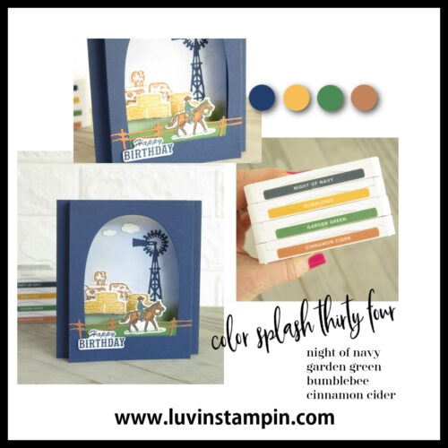 Color Splash 34 is perfect for a masculine card and for an outdoors feel.