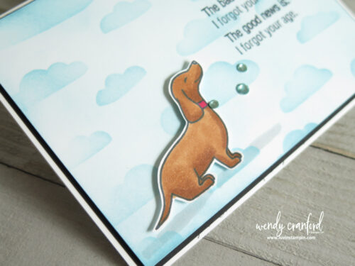 Hot dog belated birthday card using Hot Dog stamp set from Stampin' UP!