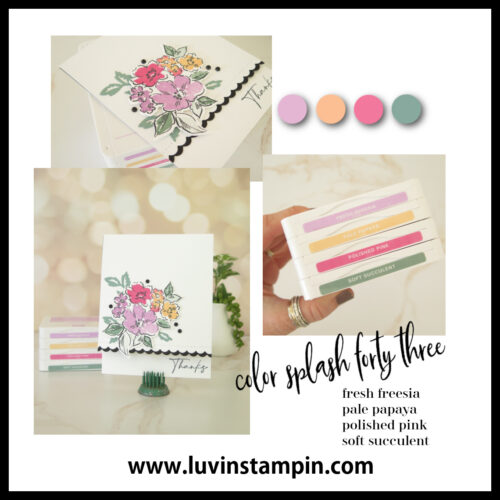 Color Splash 43 | Cardmaking color combination to spark creativity