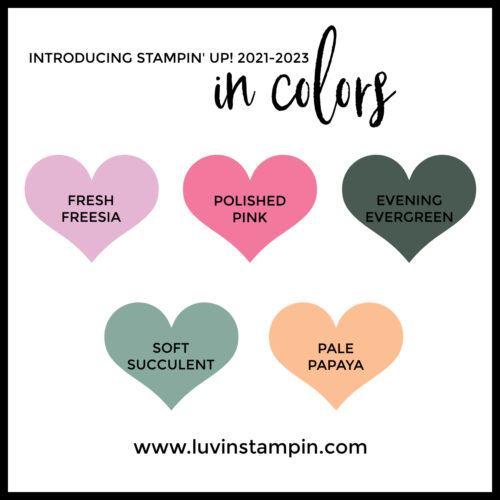 New Stampin' UP! in color from Stampin UP!
